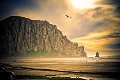 [フリー画像] [自然風景] [ビーチ/海辺] [山の風景] [岩山の風景] [モロベイ] [アメリカ風景]     [フリー素材]