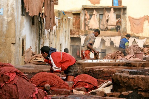 In the Depth of the Tannery