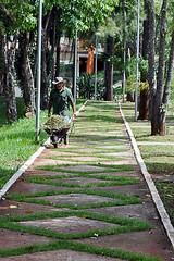 esforo (Hugo Arruda Mendes) Tags: parque verde nikon trabalho caminho rvores carriola d5000 empurrando nikond5000