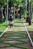 esforço (Hugo Arruda Mendes) Tags: parque verde nikon trabalho caminho árvores carriola d5000 empurrando nikond5000