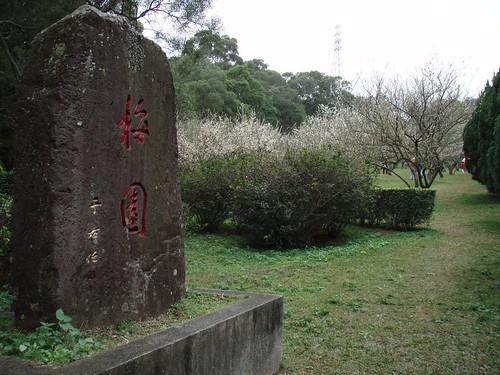 2010-01-23_12