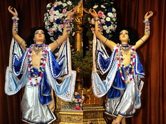 Lord Nityananda Appearance Day 2010 - Bhaktivedanta Manor - Deity Greeting - 28/01/2010 - IMG_3002_3007 (DavidC Photography) Tags: uk winter england london festival temple for hare day january lord sri international heath hanuman 28 krishna krsna manor society thursday greeting consciousness deity sita rama hertfordshire watford appearance radha prabhu 2010 28th herts aldenham gaura iskcon laxman nitai bhaktivedanta caitanya nityananda gokulananda letchmore radhagokulananda mahaprabhu trayodasi