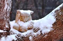 Day 30 / 365 Gargoyle in the snow (rkl245) Tags: snow nikon sb600 gargoyle 365 speedlight d90 project365 strobist