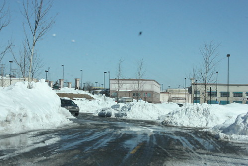 blizzardfeb10 371