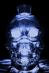 Crystal Head Vodka (John Petrick) Tags: sb600 vodka backlit bluehue d90 crystalskull 18200mmvr concordians crystalheadvodka crystalskullvodka xraylook