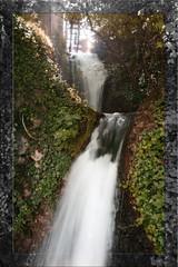 Cascada (Turayya (Pleyades)) Tags: verde green water ro river agua schaffhausen vegetation cascade vegetacin cascada rhin
