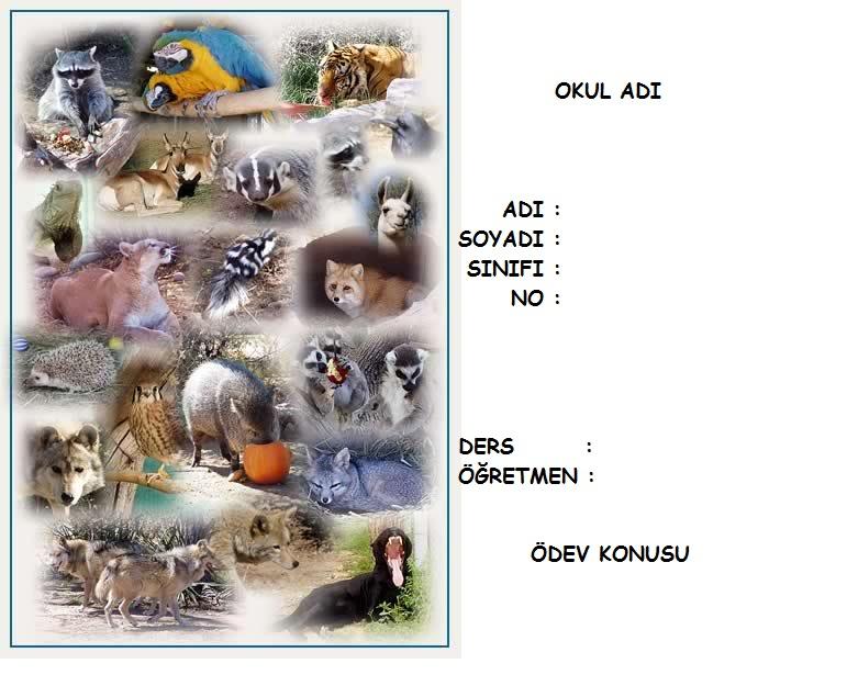 4355242085 d4bce93ca6 o vahşi hayvan resimli ödev kapakları