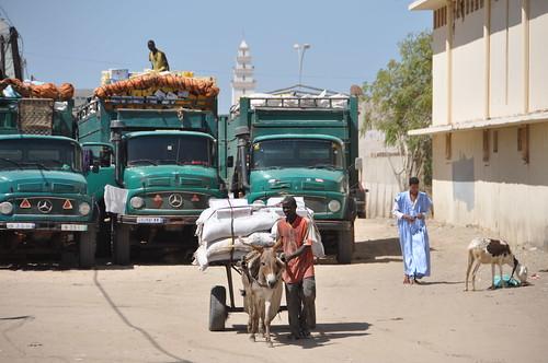 Nouakchott backstreet