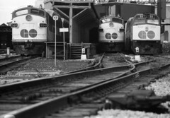 Scan10553 (citatus) Tags: gotrain funit diesel train unionstation toronto 1970 1980 bw minolta srt 102 locomotive 900 904 511