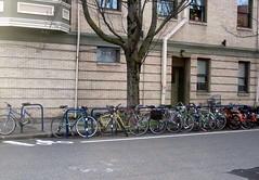 Portland Bike Corrals