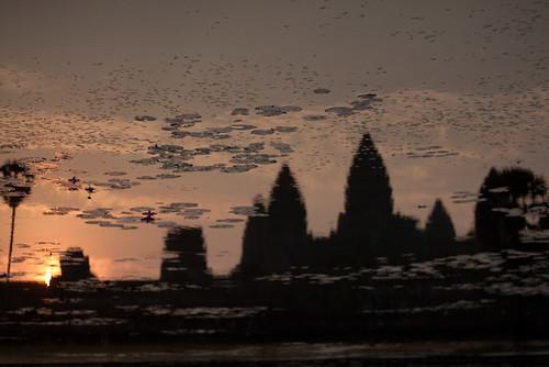 Angkor Wat sunrise reflection