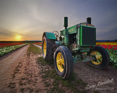 John Deere Dream (Gary Randall) Tags: flowers tractor flower field oregon sunrise tulips farm tulip johndeere woodburn willamettevalley nothdr woodenshoetulip garyrandall dsc73902 reallyyouhadtogotherethanks