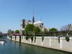 Cathdrale Notre Dame de Paris (PatMargat) Tags: paris france french frankreich cathdrale capitale francia notredamedeparis pars iledelacit laseine cathdralenotredamedeparis   capitaledelafrance