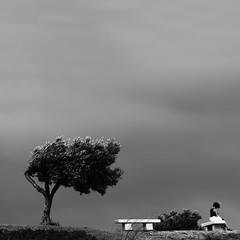 . (Color-de-la-vida) Tags: viento bancos portlligat olivera tramontana colordelavida léoferrédecia jesuisdunautrepaysquelevôtreduneautrequartierduneautresolitudejeminventeaujourdhuidescheminsdetraverse sivousnavezpasdèscejourlesentimentrelatifdevotreduréeilestinutiledevoustransmettreilestinutilederegarderdevantvouscardevantcestderrièrelanuitcestlejour ledésespoirestuneformesupérieuredelacritiquepourlemomentnouslappelleronsbonheurlesmotsquevousemployeznétantpluslesmotsmaisunesortedeconduitàtraverslequellesanalphabètessefontbonneconscience lyricslasolitudeléoferré conteurdhistoiresenimageslasolitude