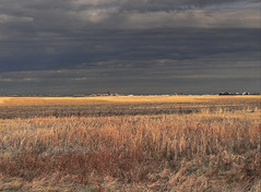 Dark and Light (Ruth Voorhis) Tags: clouds darksky farmfield