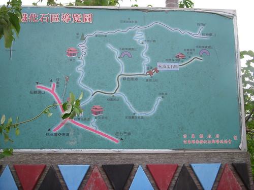 蘇鐵化石區