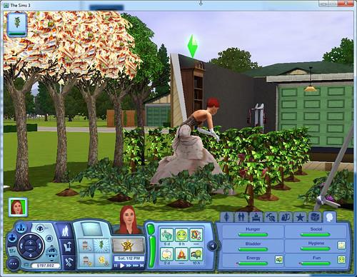 Gardening in Dior