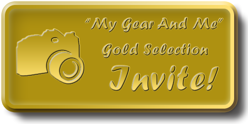 My Gear And Me - Gold Selection Invite