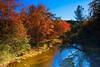 Autumn Colors_4 (nejmantowicz) Tags: california autumn trees river chico ef2470mmf28lusm naturesfinest coth supershot anawesomeshot impressedbeauty nejmantowicz vosplusbellesphotos flickrclassique