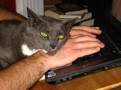 You didn't really want to type, did you?