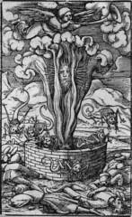 Hans Holbein Apocalypse (Ken_Mayer) Tags: john apocalypse revelations hansholbein