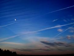 The Moon Hangs Over Islesboro (Erica Robyn) Tags: maine newengland islesboro perfectsunsetssunrisesandskys ericarobynphotography ericarobyn