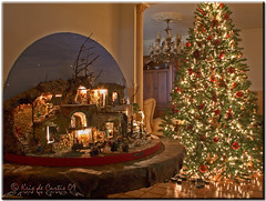 Home on Christmas Day (krisdecurtis) Tags: christmas xmas longexposure decorations italy tree love canon stars lights navidad italia 300d campania canon300d magic decoration dream noel christmastree ornament ornaments christmasdecorations myhouse crib kris customsandcelebrations natale 2009 neapolitan christmascard presepe presepio caserta christmastreeornaments napoletano maddaloni presepi christmasatmosphere christmasbauble krisdecurtis christmas2009 natale2009