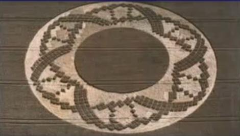 dna crop circle