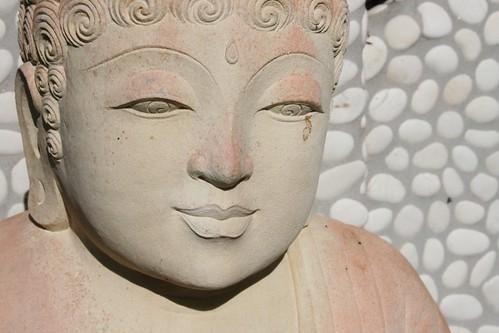 Tears of the Buddha.