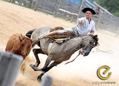 IMG_6148 (Edu Rickes) Tags: brazil horses brasil caballos rodeo cavalos rs riograndedosul gaúchos gaúchas beautifulshots piratini gineteada canon450d brazilianphotographers fotógrafosbrasileiros tirodelaço todososdireitosreservados fotógrafosgaúchos culturagaúcha edurickes belasimagens rodeiogaucho edurickesproduçõesfotográficas canonrebeldigitaleosxsi copyright©2010 fotografiaslegais