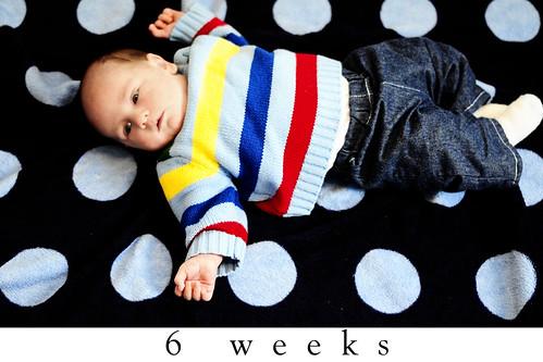 6 Week
