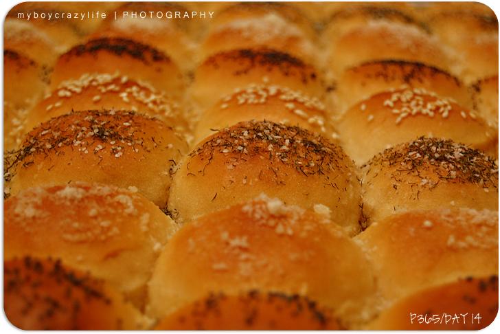 01.14.2010 | a bit of baking