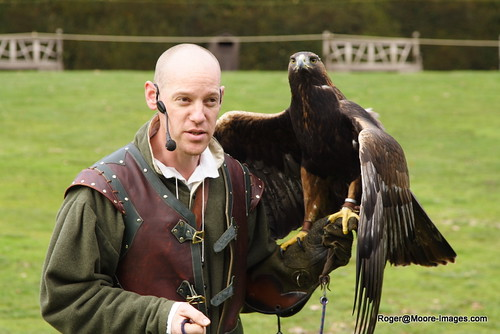 The Eagle Whisperer