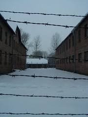 Through the Wire (Workspace__25) Tags: winter chimney cold sign urn holocaust wire memorial fences poland electrocution gas medical ashes chamber hanging blocks rudolf jews squad auschwitz arbeit barbed crematorium firing frei execution maximilian macht kolbe oswiecim owicim i hss