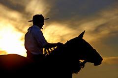 Campeando o rumo... (Eduardo Amorim) Tags: sunset brazil horses horse southamerica brasil caballo cheval atardecer caballos tramonto sonnenuntergang prdosol cavalos pelotas pferde cavalli cavallo cavalo gauchos pferd riograndedosul pampa poniente anoitecer coucherdesoleil hest hevonen campanha brsil chevaux gaucho entardecer crepsculo  amricadosul poente hst gacho  amriquedusud  gachos  sudamrica suramrica amricadelsur  sdamerika   costadoce americadelsud  americameridionale eduardoamorim travelsofhomerodyssey iayayam yamaiay
