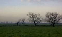 Field (Lisa Geneve) Tags: france sony a350 worldsartgallery