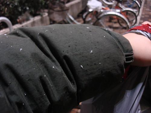 2010-02-16 東京之旅第二天 075