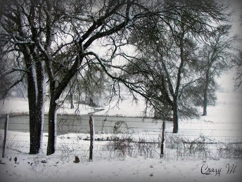 022310 Snow