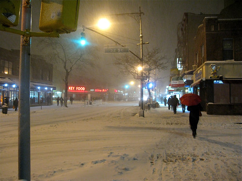 Feb 25th 2010 Snowstorm, 3