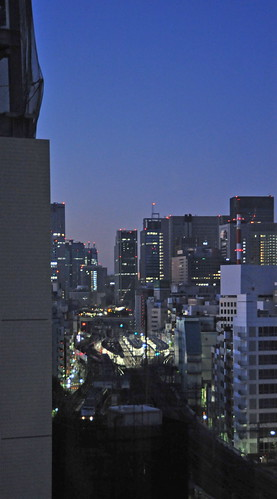 Tokyo 2009 - 秋葉原 - From REMM (3)