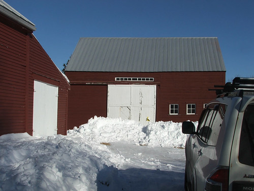 Our New Maine Farm
