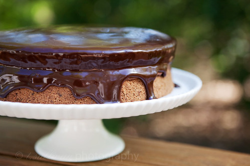 Chocolate Boston Cream Pie