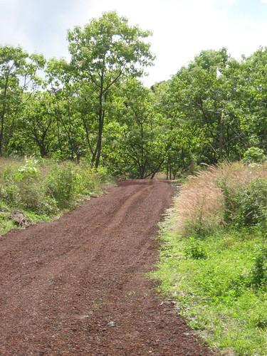 Hokulea_retreat_driveway