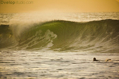 The Perfect Light (bennorton808) Tags: sunset green beach colors beautiful hawaii surfer north wave shore pipeline