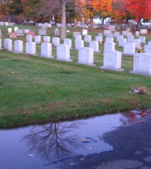 (sarahann photography) Tags: trees fall colors leaves reflections grove walnut headstones ct foliage puddles meriden cemmetary