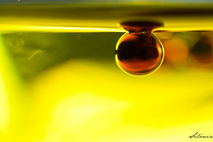 Oil & Vinegar-1