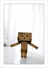 just Dieter (Toni_V) Tags: texture toy dof usm dieter minimalism 2009 d300 danbo 2028 revoltech capturenx toniv usmhaller dsc3813 danboard 091009