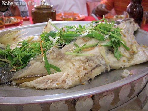 Steamed River Patin Fish