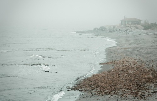 foggy coast near the mouth of St. Lawrence River