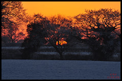 Sunset And Snow 01 (Kirk09) Tags: uk ireland sunset england orange sun snow west colour silhouette yellow set wales scotland europe shine cheshire bright snowy united east crewe souther and colourful shiney northern blizzard kindom smallwood sandbach